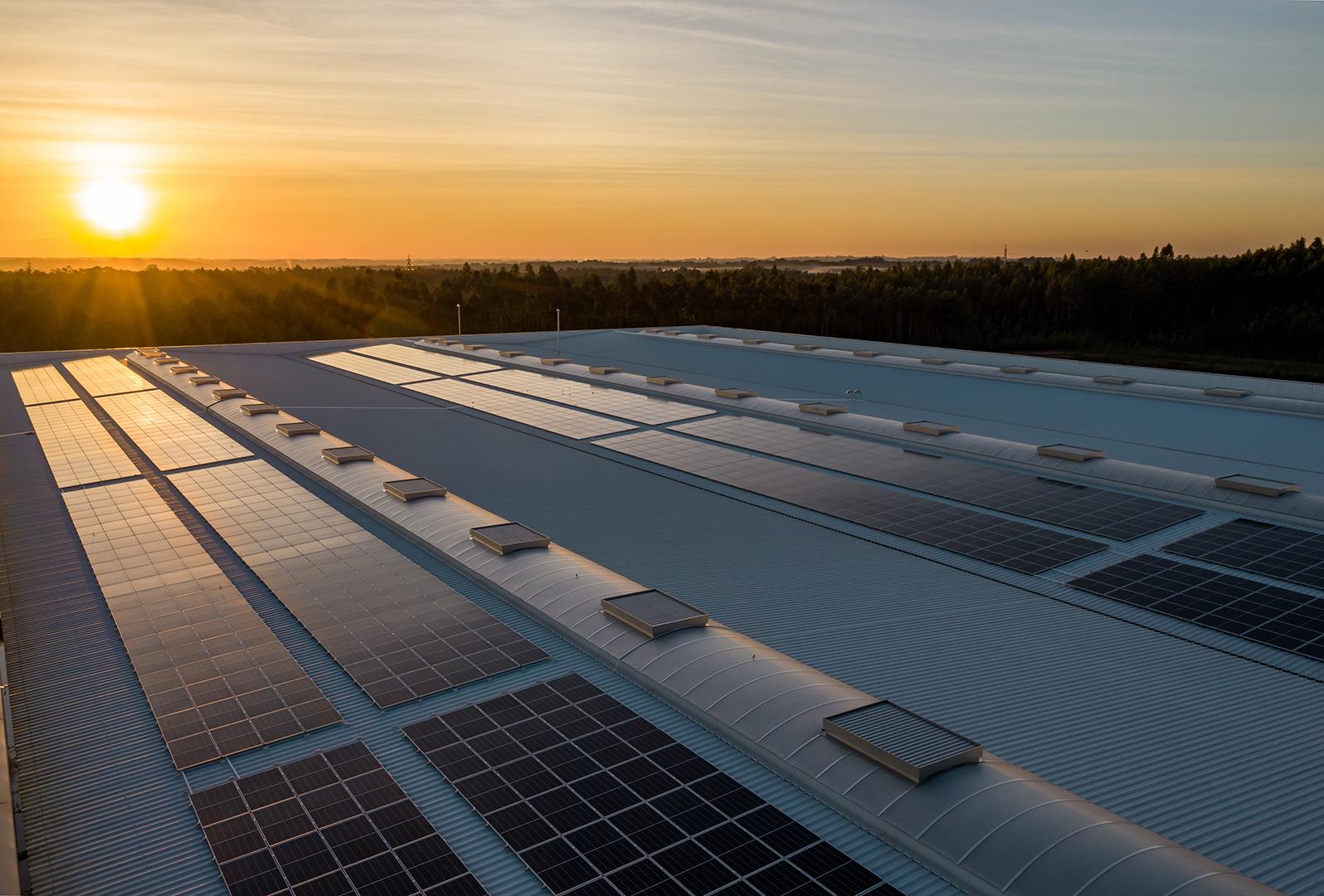 Solcelle-erhverv-solceller-på-tag